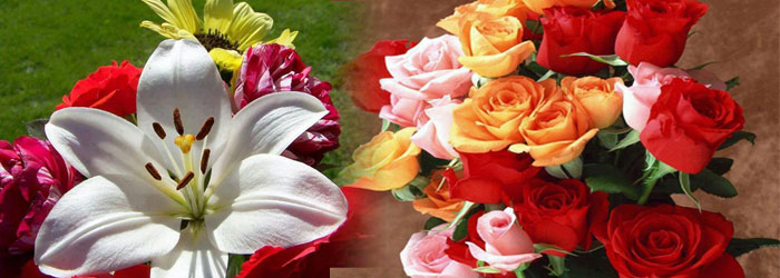 ramos-de-flores-online