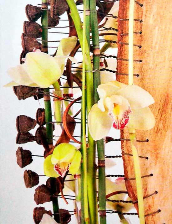 Arreglo-orquideas-tronco-eucalipto-detalle