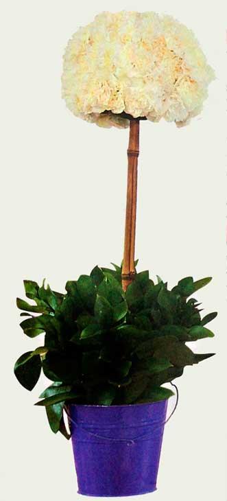 Diseno-floral-claveles-blancos