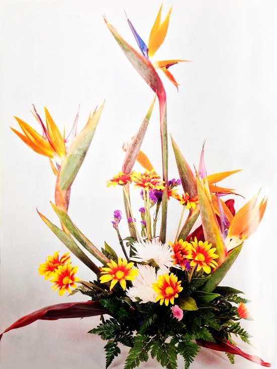 Diseno-floral-margaritas-amarillas