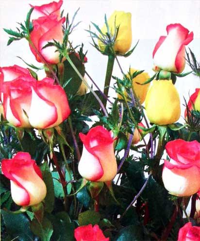 Disena-un-arreglo-floral-clasico-en-minutos-detalle