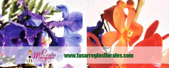 decoracion-con-orquideas-moradas