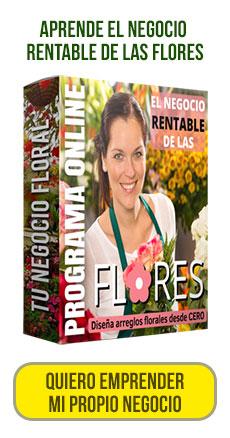 Aprende del negocio de las flores